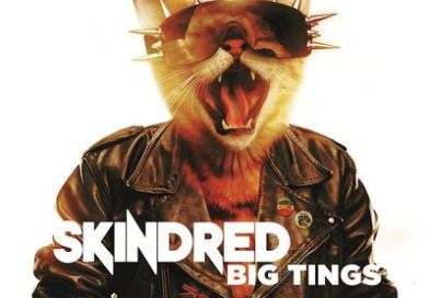 Chronique : SKINDRED – Big Tings