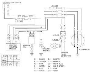 Tlr200 Alternator Wiring  Honda  Trials Central