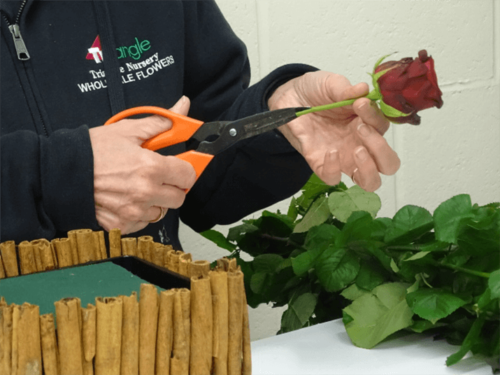 Cut the roses, leaving approx. 8 to 10cm of stem - slit the stem up and remove the guard petals (optional).