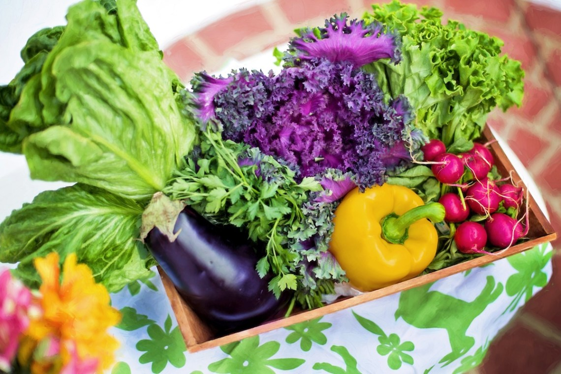 What Are The Environmental Benefits Of Growing Your Own Food