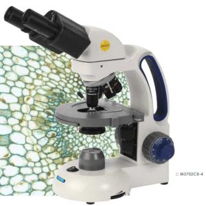 M3702CB-4 Swift Compound Microscope