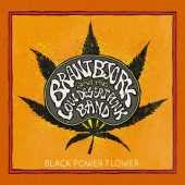 Brant Bjork - Black Power Flower - Tribe Online Magazin