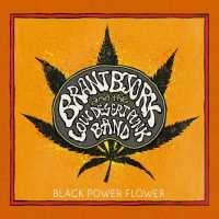 Brant Bjork - Black Power Flower - Tribe Online Magazin