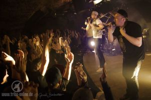 Antilopen Gang Jazzhaus 2015 - yDSC07230 - Tribe Online Magazin