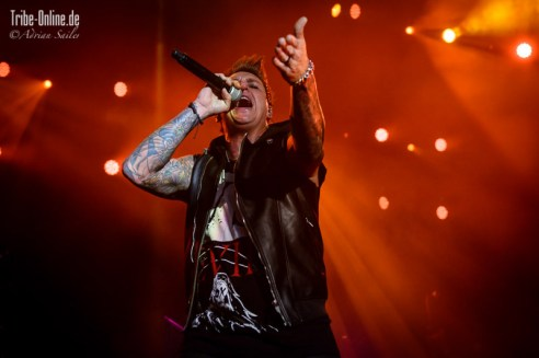 Five FInger Death Punch and Papa Roach_2015_14Adrian Sailer