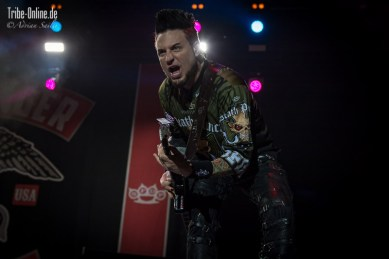 Five FInger Death Punch and Papa Roach_2015_30Adrian Sailer