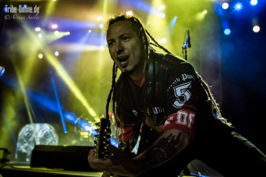 Five FInger Death Punch and Papa Roach_2015_40Adrian Sailer