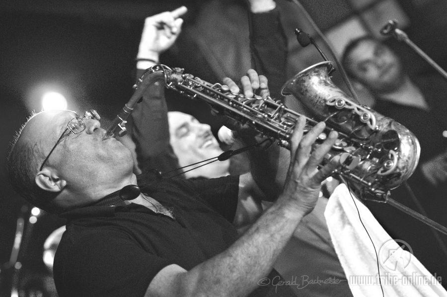 Fanfare Ciocarlia - ZMF 2017 - yDSC01759 - Tribe Online Magazin