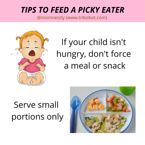 Tips to Feed A Picky Eater