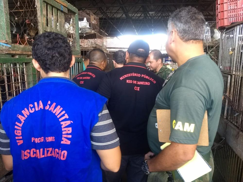 Operação contra venda irregular e maus-tratos apreende animais em Campos