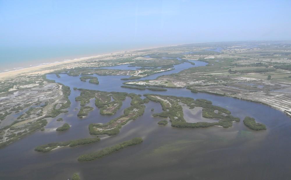 Projeto da Uenf vai proteger animais do Parque da Lagoa do Açu