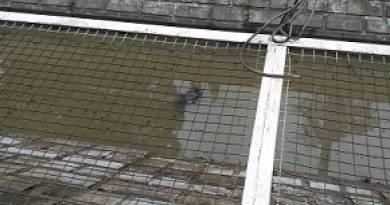 Corpo é encontrado dentro do Canal Campos-Macaé, no Centro de Campos