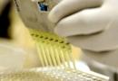 Prefeito sugere aplicação de ozônio no ânus para combater a covid-19