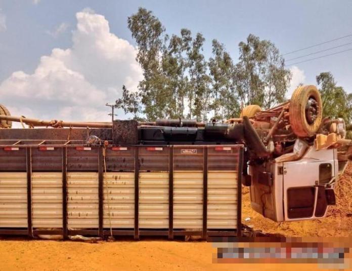 Alto Alegre - Caminhão carregado com gado capota, após colisão frontal com caminhonete na Zona Rural do Município