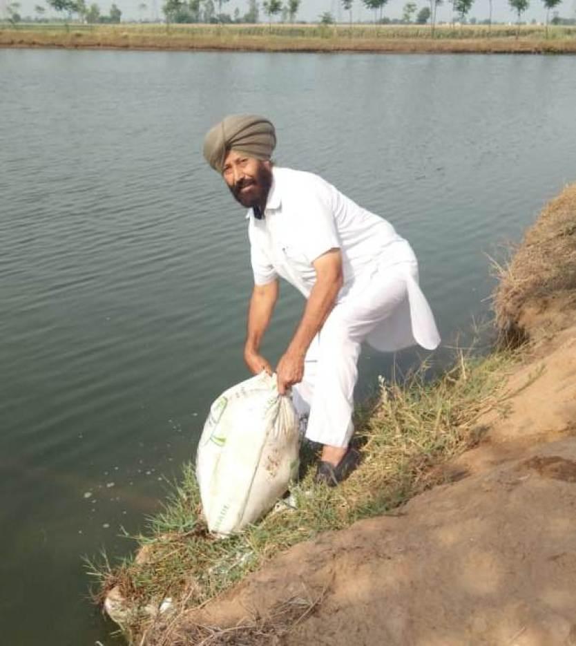Fish Farmer Gurbachan Singh from village