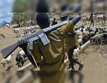 Herdsmen kill pregnant woman in Ekiti, 24 hours after Fayose's peace meeting