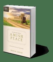 amish-peace3D