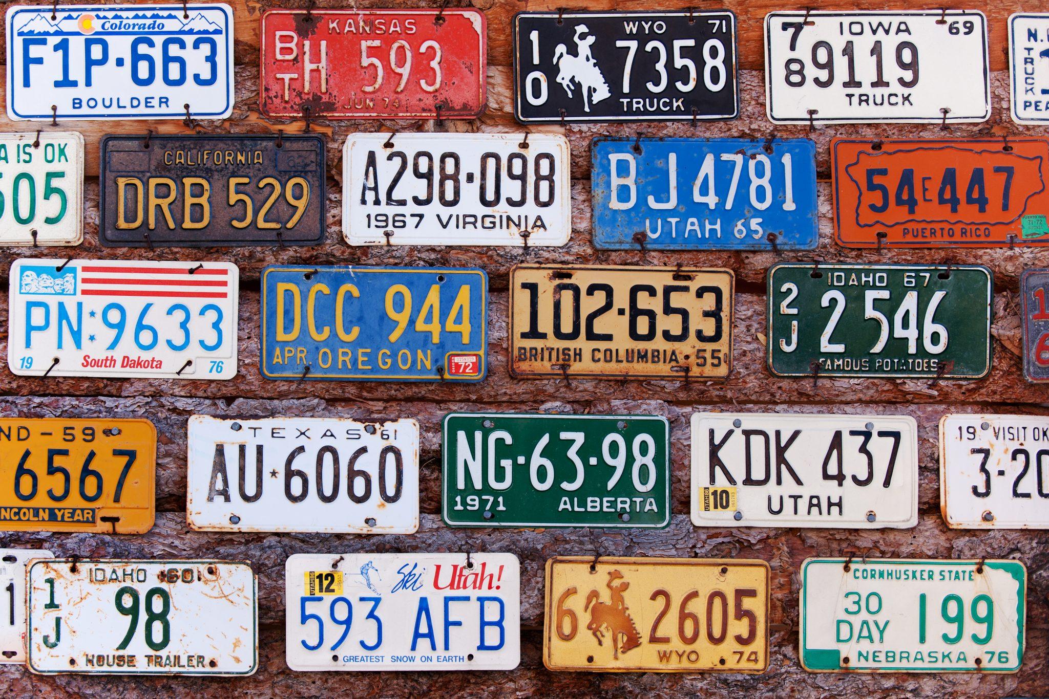 Old license plates - Tricia Lott Williford