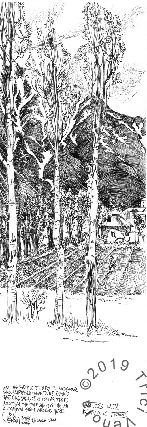 Plein air drawing of Artos Mountain with trees