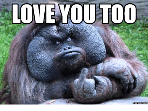 I Love You Meme Funny For Her : Best i love you meme daily updated tricks by stg