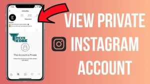 view Private Instagram profiles