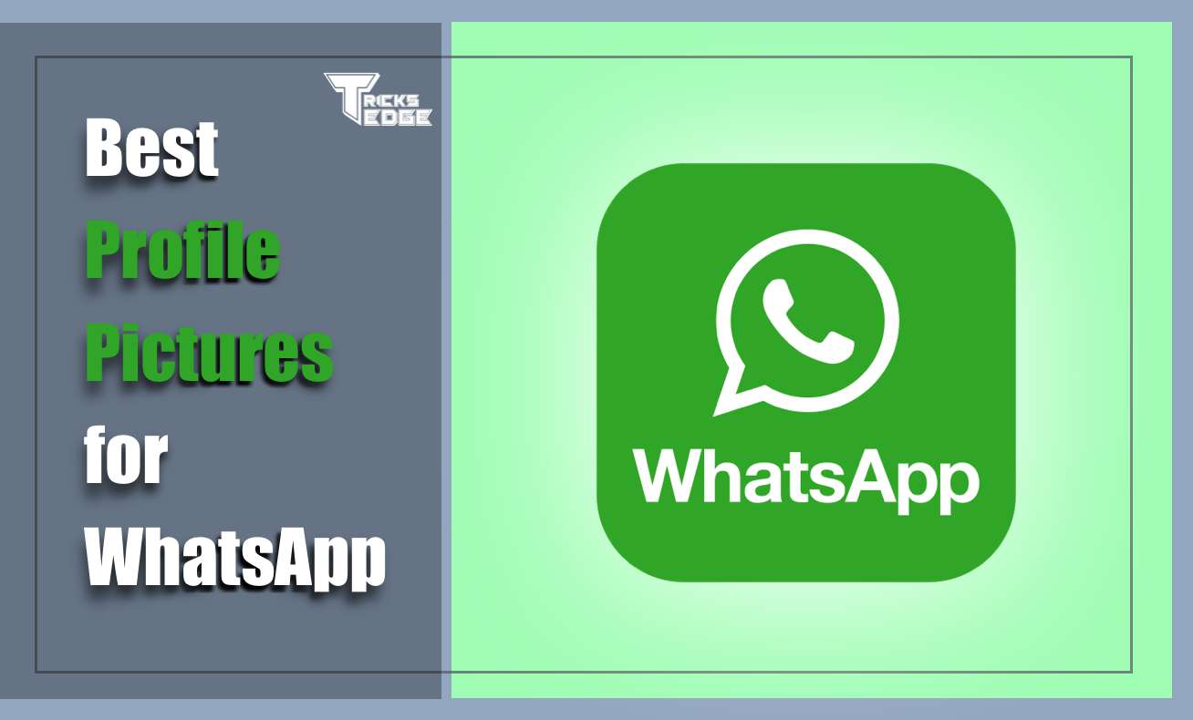 Best Profile Pictures for WhatsApp