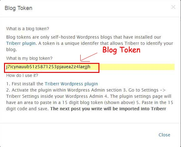 promote blog using Triberr