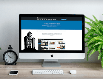 WordPress CMS for building your own website