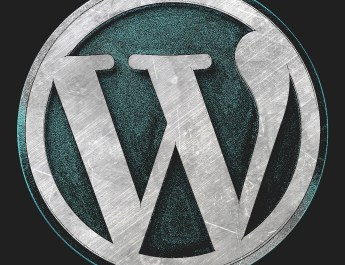 WordPress the Best CMS