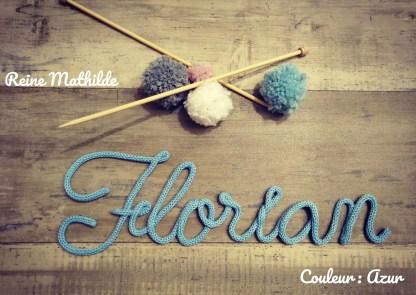 Florian au tricotin