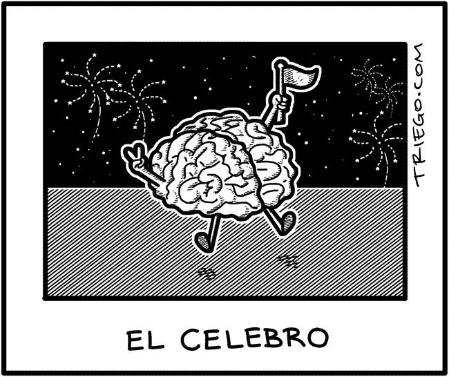 celebro