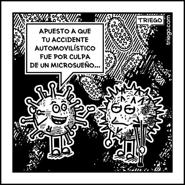 microsueno