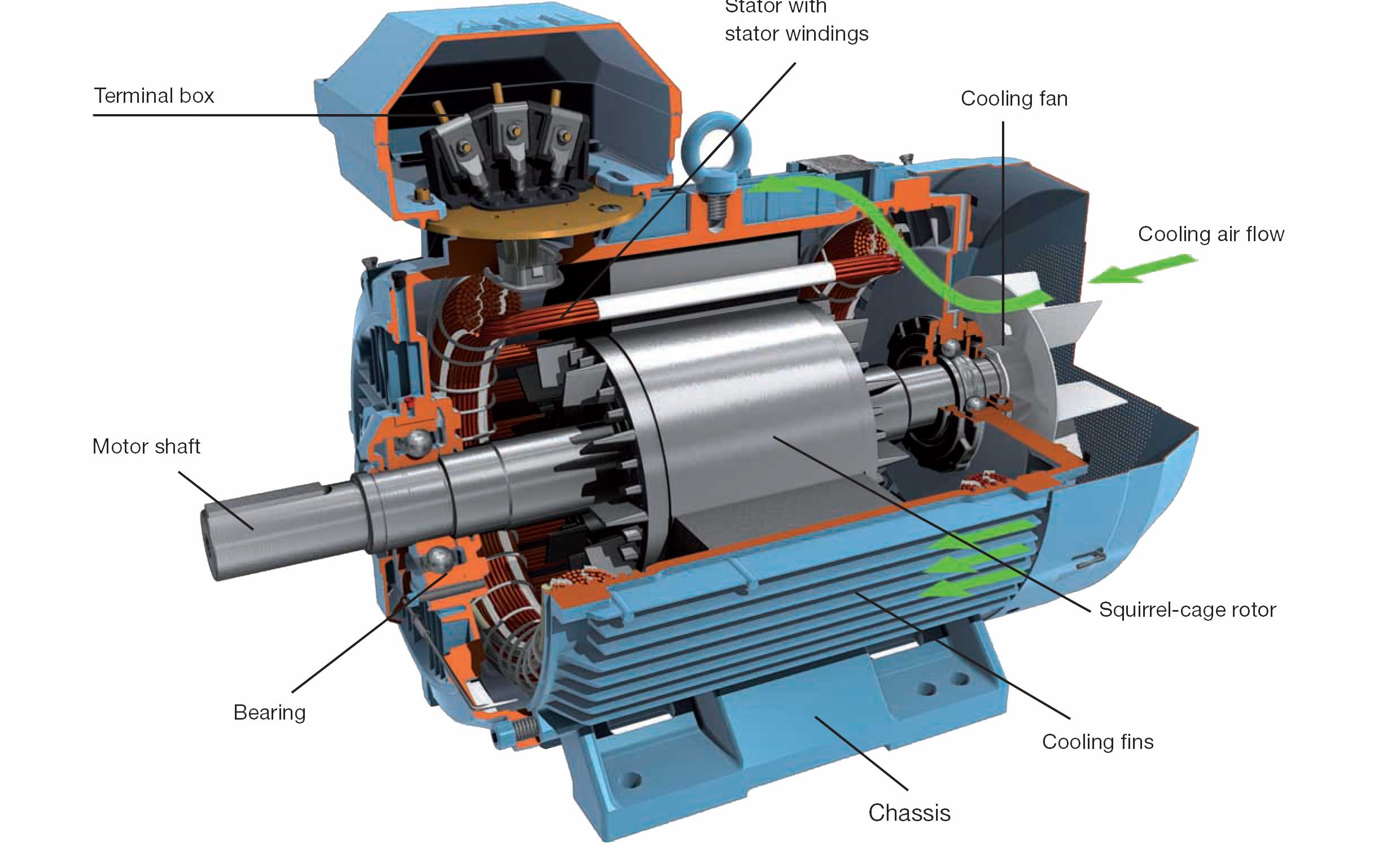 The First Electric Motor Diagram Motor Repalcement Parts And Diagram