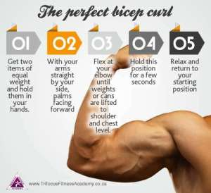 How to perform the perfect preacher curl