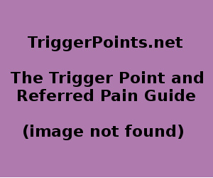 Glut Med Trigger Point Diagram