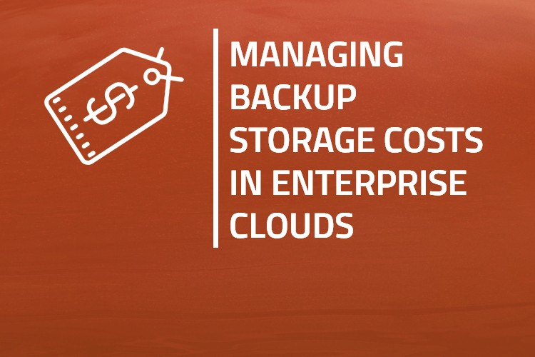 Managing Backup Storage Costs in Enterprise Clouds