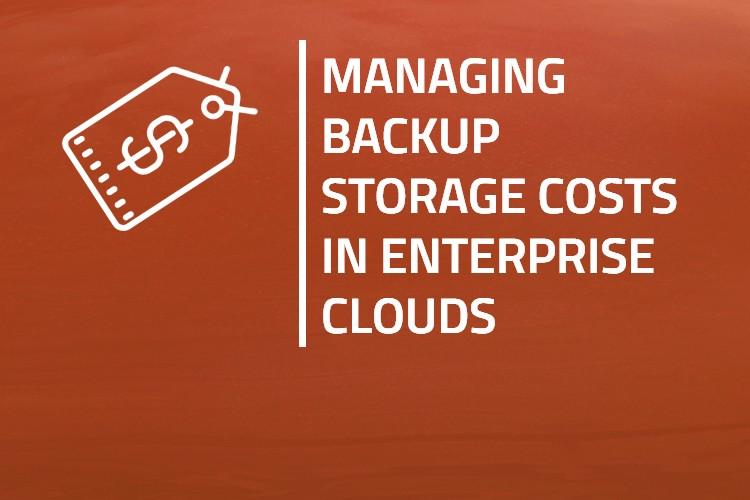 Managing Backup Storage Costs in Enterprise Clouds