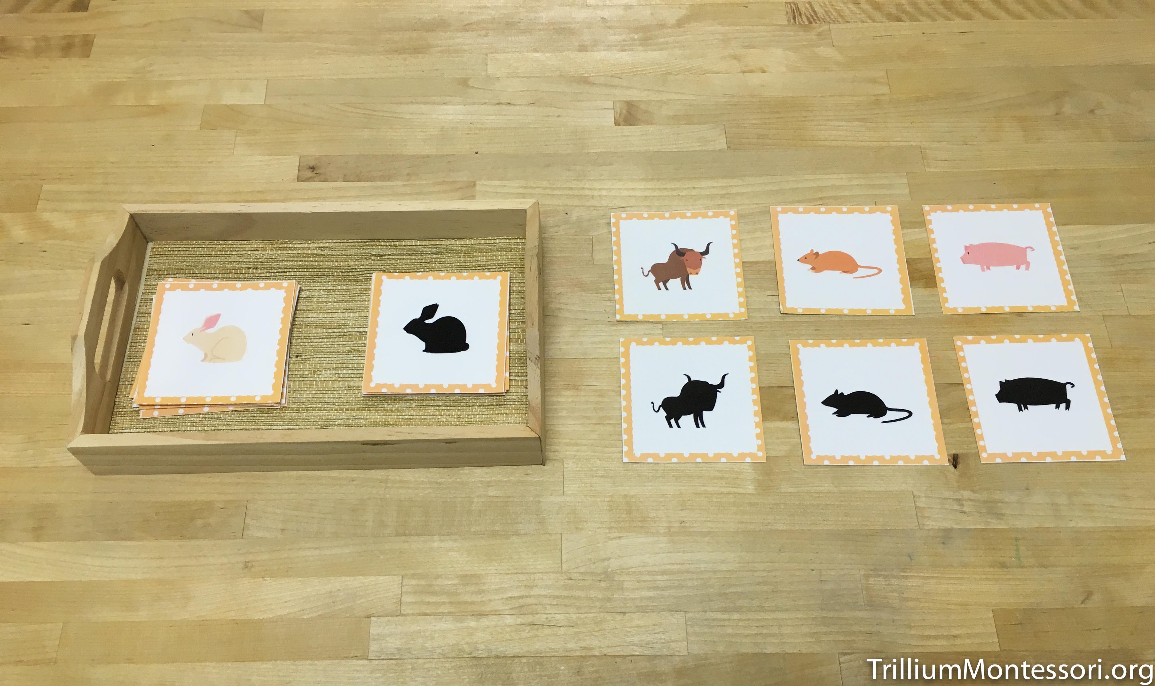 Chinese New Year Preschool Activities  Trillium Montessori