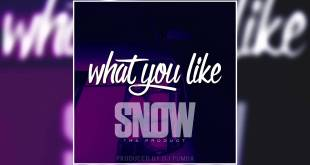 Snow Tha Product - What You Like (Audio)