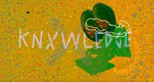 Knxwledge - Flyinglizrds (Video)