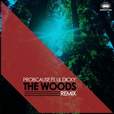 ProbCause ft. Lil Dicky - The Woods Remix (Audio)