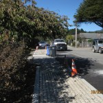 Completed Bio-swale along Ocean Avenue.