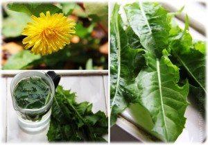 Dandelion tea infusion for health.