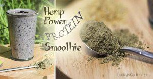 Hemp protein power smoothie by Trinity Bourne