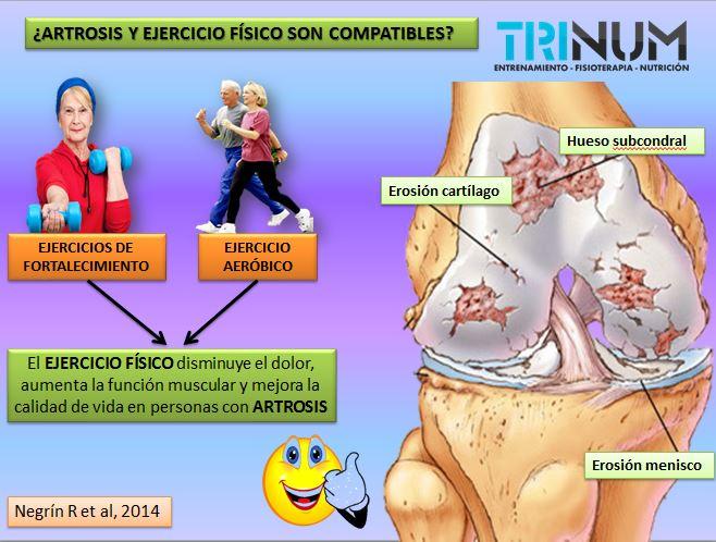 Resultado de imagen para la artrosis y el ejercicio fisico