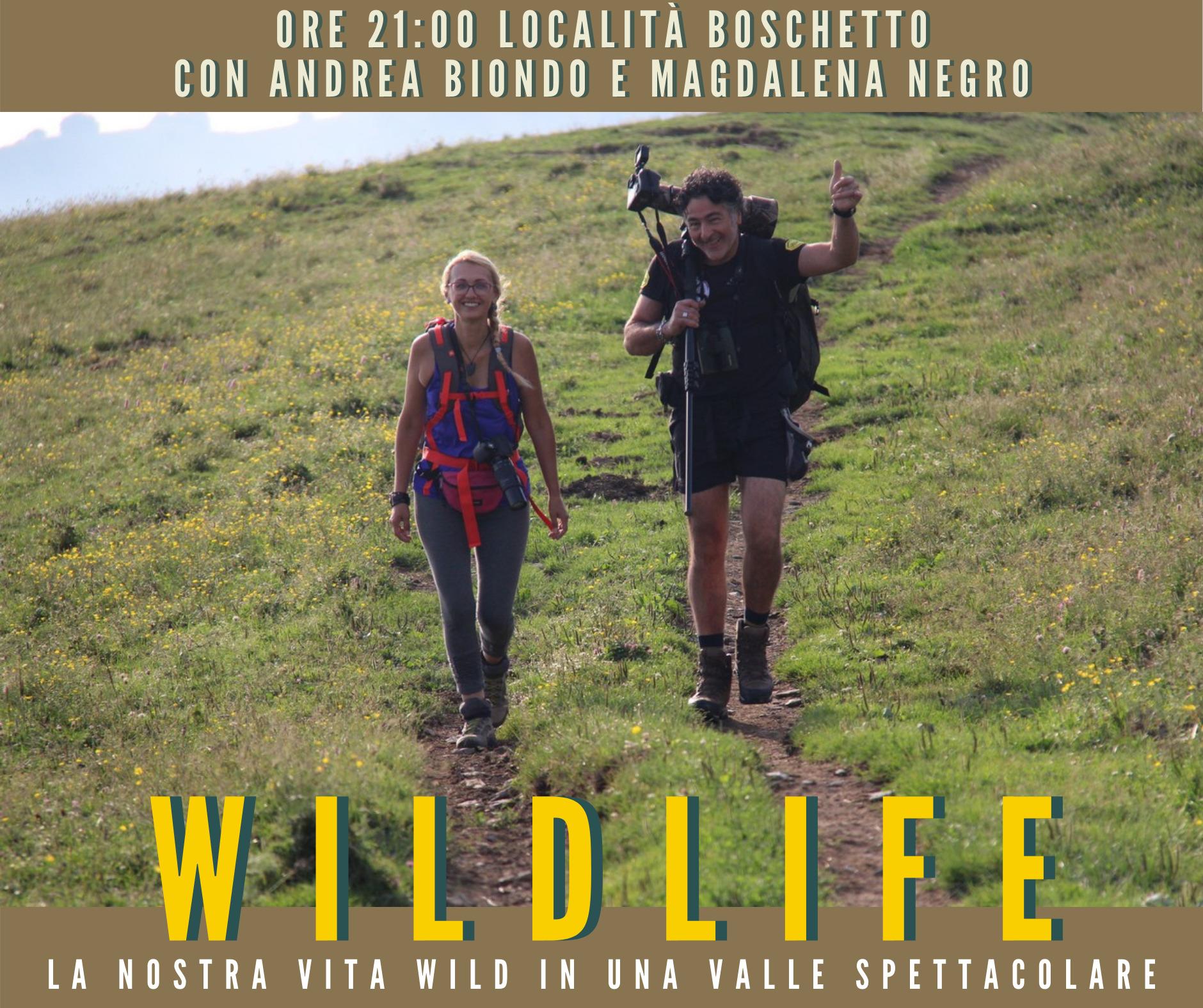 wildlife in valle argentina