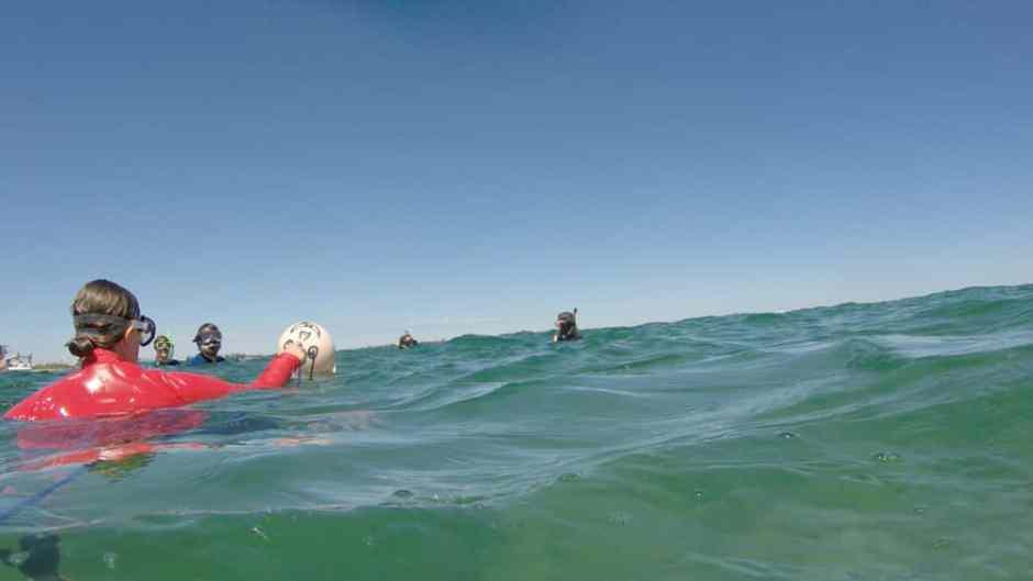 Tout le monde à l'eau, accompagné de notre balon de secours nommé Wilson