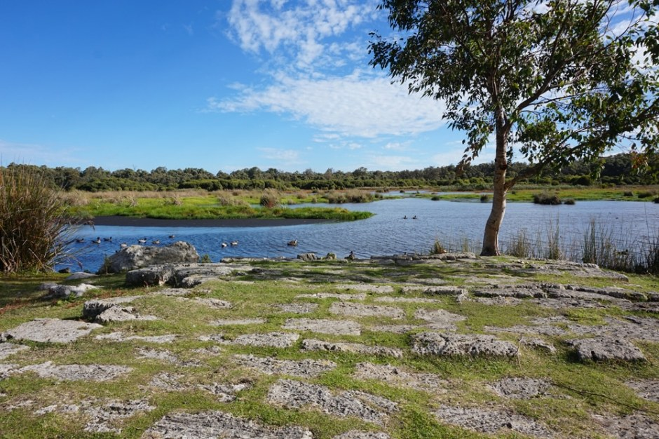 yanchep-national-park
