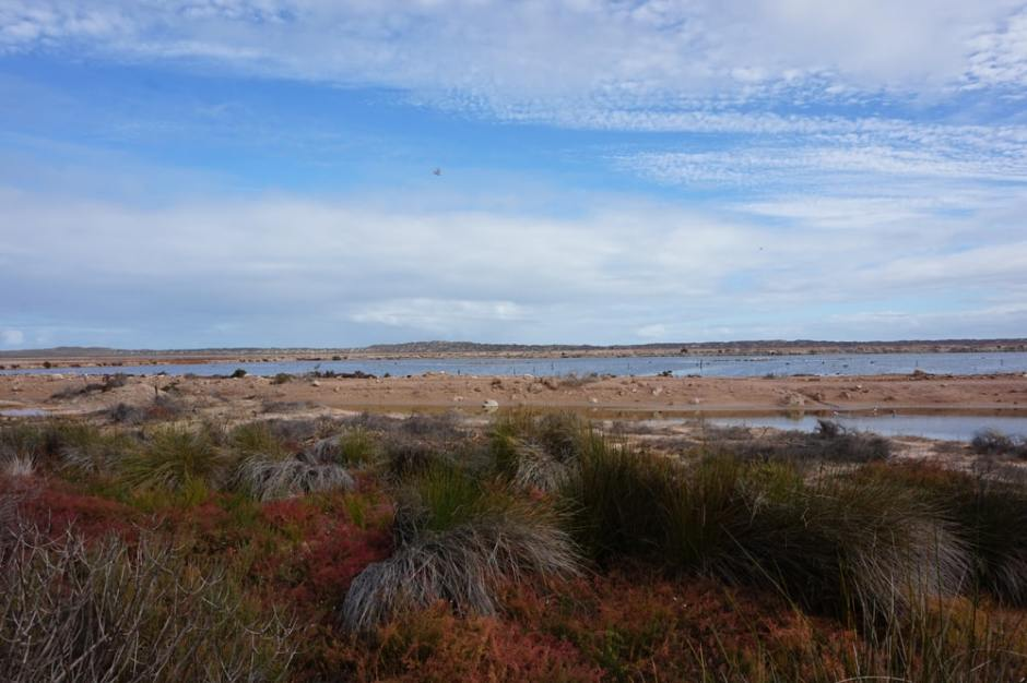 hutt-lagoon