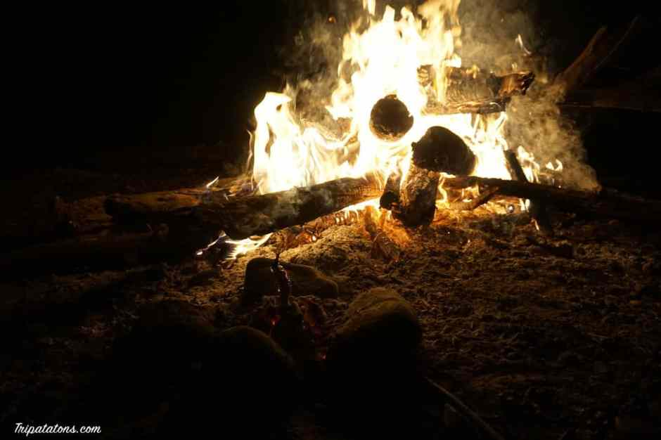 camping-fire-wood